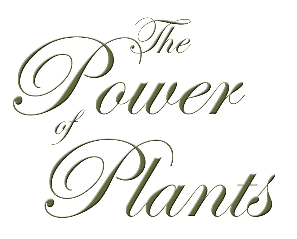 Power of Plants_script