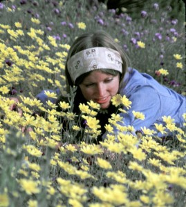 Robin Kobaly in a field of coreopsis