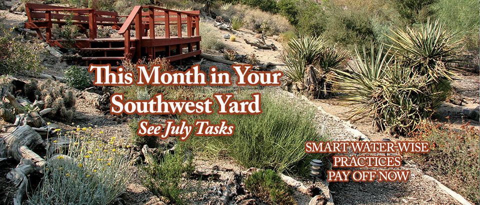 PoP-feature-slider-July-in-Yard