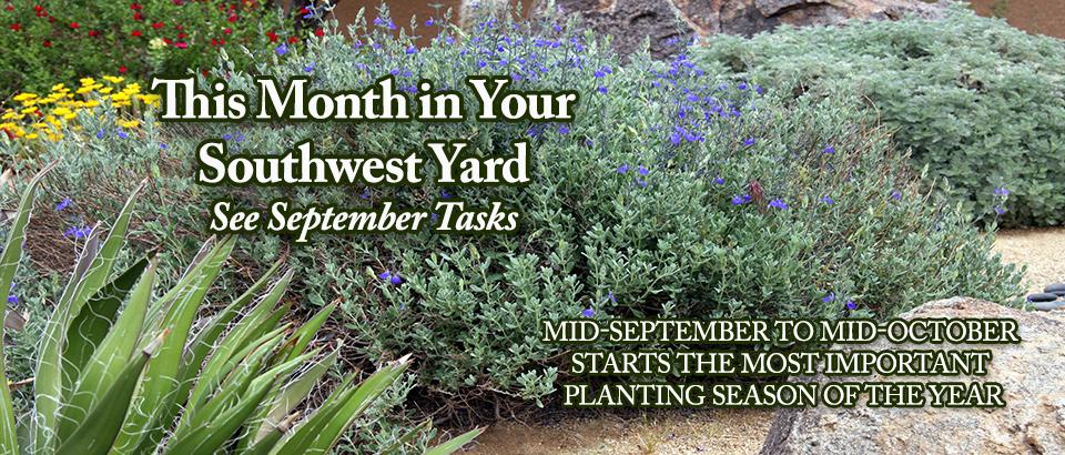 PoP-feature-slider-September-in-Yard