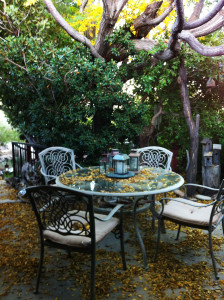 Fall leaves_Songbird Cottage porch_2038