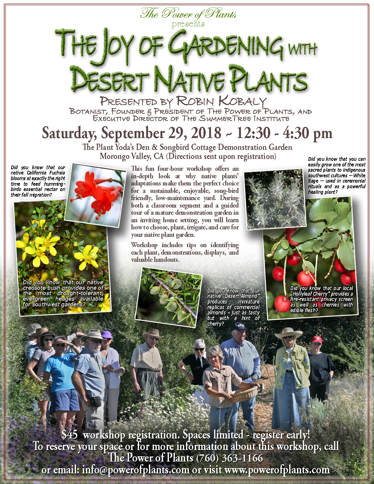 Join Robin S Next Class The Power Of Plants